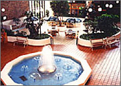 Comfort Inn Tampa Conference Center