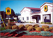 Super 8 Motel Guelph Kitchener Waterloo