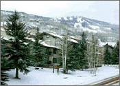 ResortQuest Rentals at Snowmass Collection