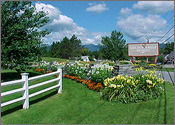 Colony Golden Eagle Resort, Stowe, Vermont Reservation