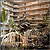 Embassy Suites Birmingham Hotel
